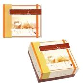 ABA-10 Κουτί Αρτοποιείου-Ζαχαροπλαστείου με Επικάλυψη Αλουμινίου No.10, 21,8x22x8cm (τιμή ανά κιλό)